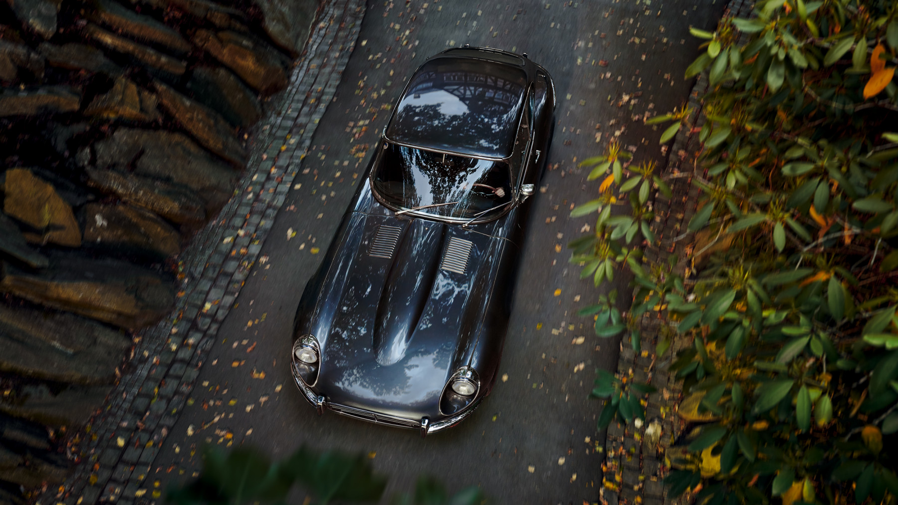 Jaguar E-Type 5